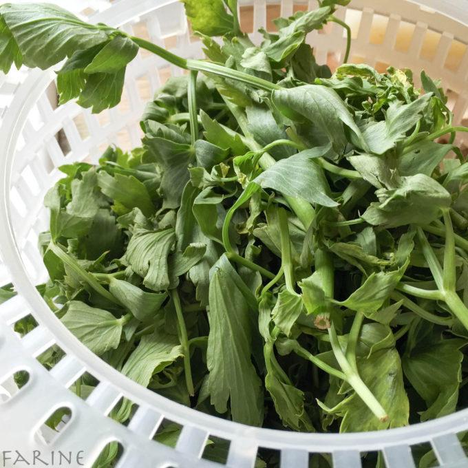 Fresh lovage leaves