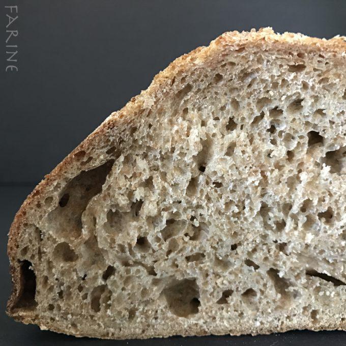Miche crumb