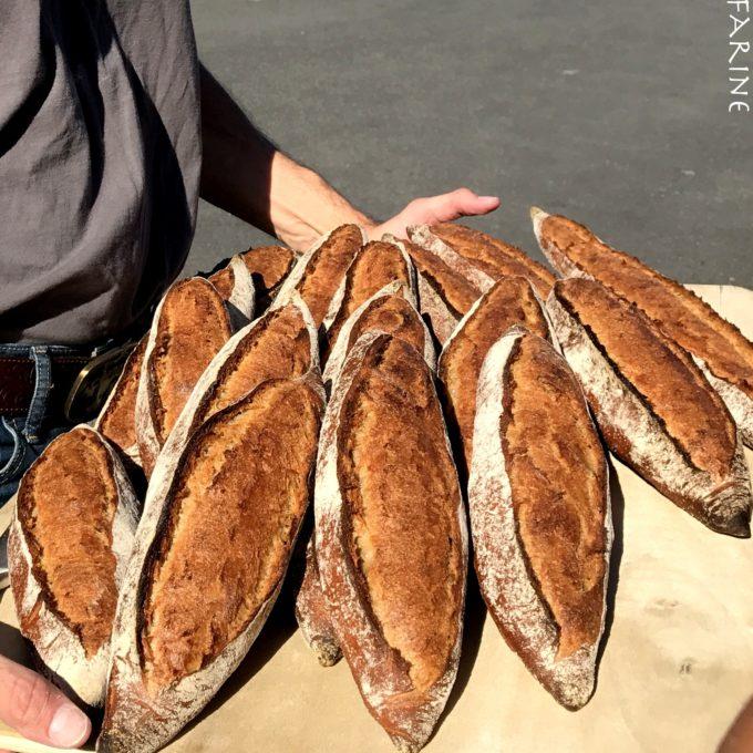 Whole-grain baguettes